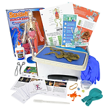 dissection-frog png.png