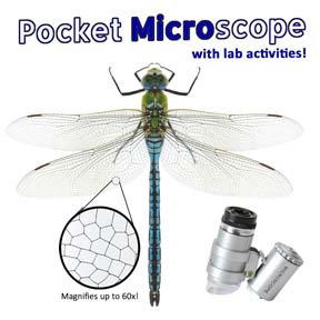 Easy Peasy Pocket Microscope