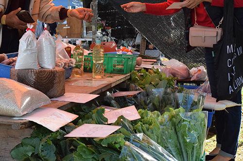オーガニックマーケットの取りたて野菜