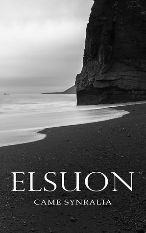 Elsuon Cover Master v6C - Came Synralia.