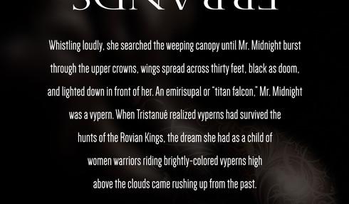 Savage Errands - Mister Midnight