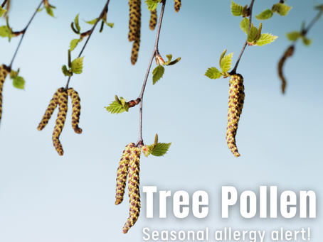 This is the year to get seasonal allergies under control. Here's how.
