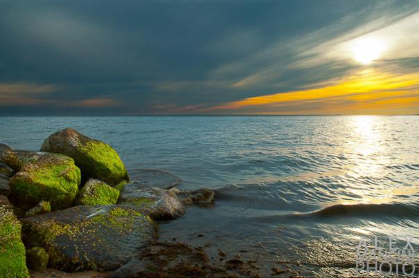 Cape Cod, M