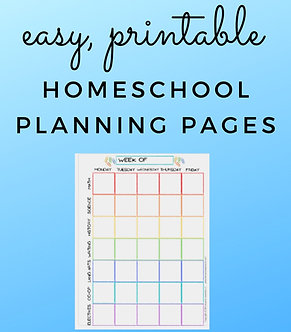Lessons Learned x 2 2020-2021 Homeschooling Planner