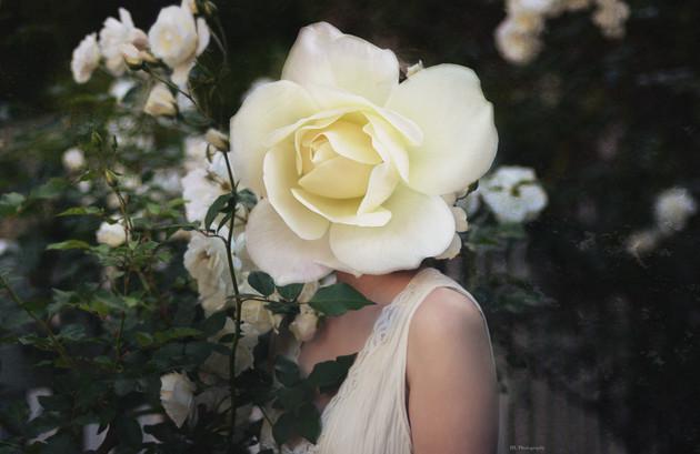 In Full Bloom pt. III