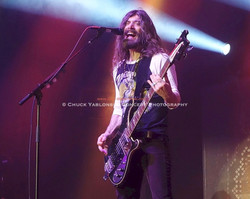 Michael Devin - Whitesnake