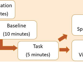 New Paper - Testing the validity of a novel passive stress task