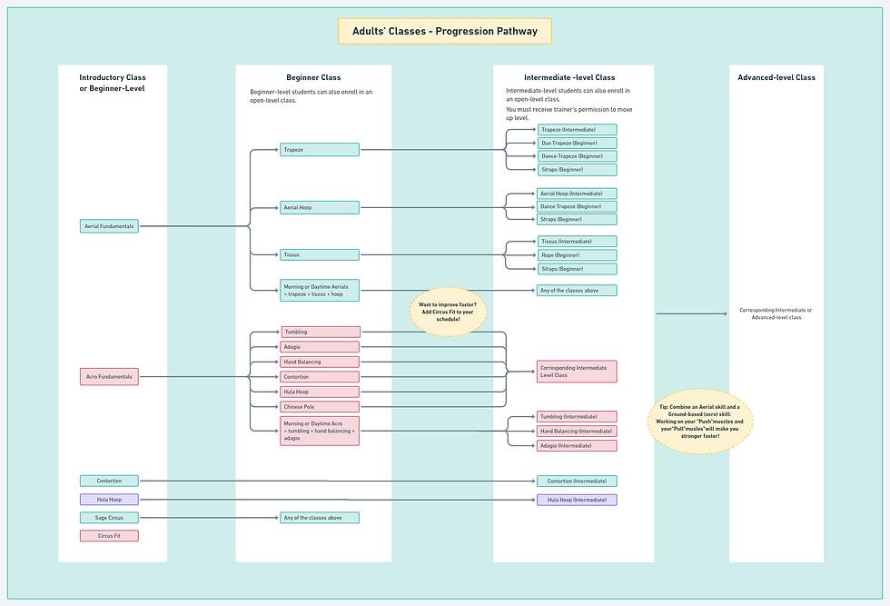Progression Pathway.png