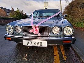 jaguar 22.jpg