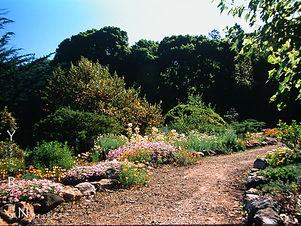 garden_tune_up.jpg
