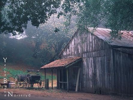old_barn_s.jpg