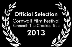 Cornwall Film Festival 2 Website