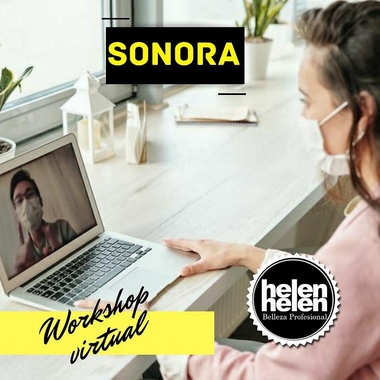WORKSHOP ONLINE SONORA