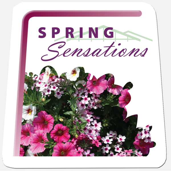 Spring Sensations Tags