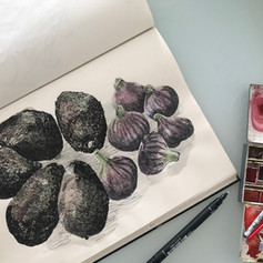 Figs and avocados