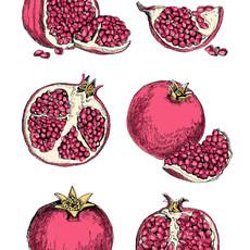 Pomegranate study