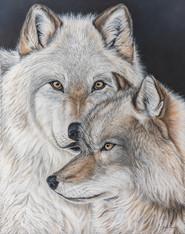 La sagesse du loup