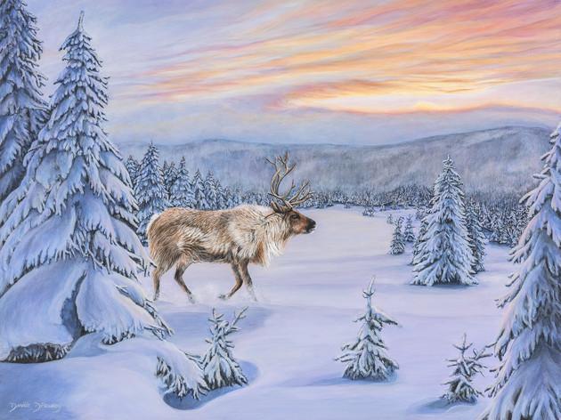 Le caribou solitaire