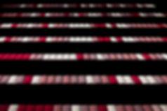 KIP_Dvorana_12.jpg