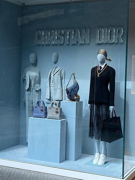 Dior Woman Artz