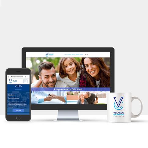 Sitio Web Velasco y Campos Asesores