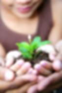 intervention psychosociale, thérapie, travailleur social, psychoéducateur, thérapeute en relation d'aide