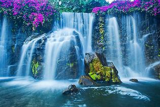 kamni-mox-cvety-vodopad.jpg