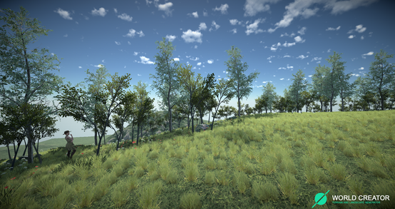 Small Hillside 2
