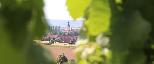 IMG_3163 Stage Wein.jpg