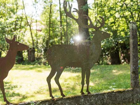 Die Natur rund um Bad Rodach