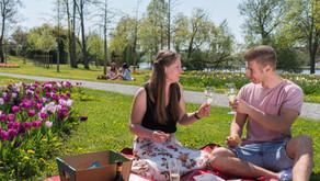 Picknickplätze in und um Kitzingen