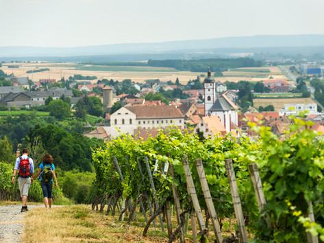 TraumRunde Dettelbach und      Dettelbacher Dörfer