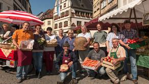 Grüner Markt in Kitzingen