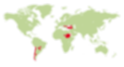 #6524#KLE2019 Herkunftslaender Kindergar