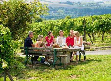 www – wie Wandern, Wein, Winzerlatein