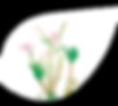#7187#KLE2020_Webseiten_Pflege_2020-Blat