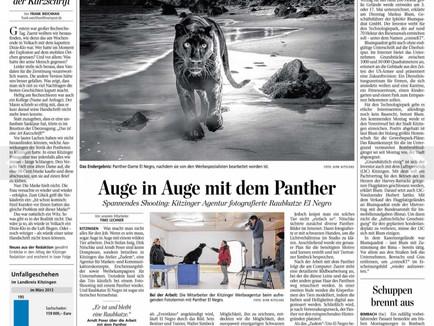 MainPost: Auge in Auge mit dem Panther.