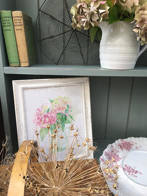 Watercolour Pink Hydrangeas