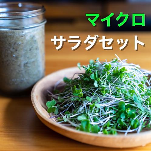 マイクロ・サラダセット