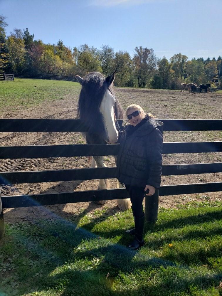 At Dogtails Farm.jpg