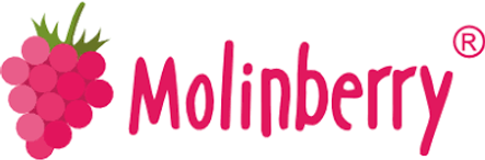 Molinberry flavour concentrates.png