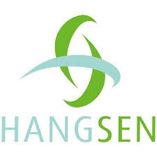 Hangsen flavour concentrates.jfif