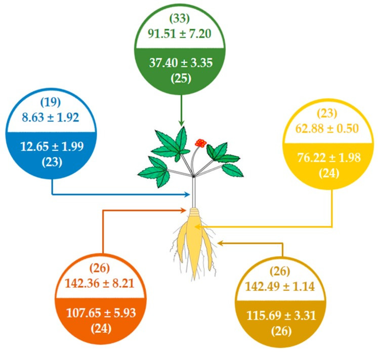 Comparison of ginsenoside components between New Zealand-grown Asian ginseng