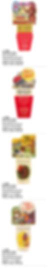 PHONECarton Inserts5.jpg
