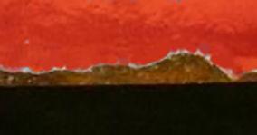 orange rust.jpg