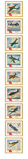 Aviation Cardboards_PHONE_2020_3.jpg