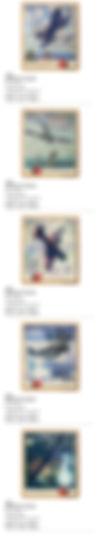 Aviation_PHONE_13.jpg