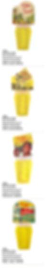 PHONECarton Inserts.jpg