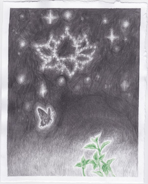 butterfly with mint sprigs and lotus constellation