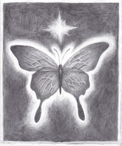 butterfly with single star